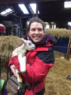 Visiting the lambs