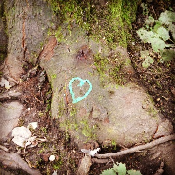 hearts in the woods